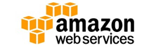 AWS [AMZN: NasdaqGS]: Pioneers of the Government Cloud Space